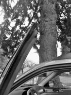 car door (2)