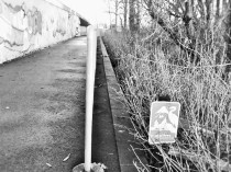 critical area sign (2)