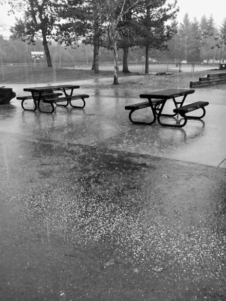 hail downpour (2)