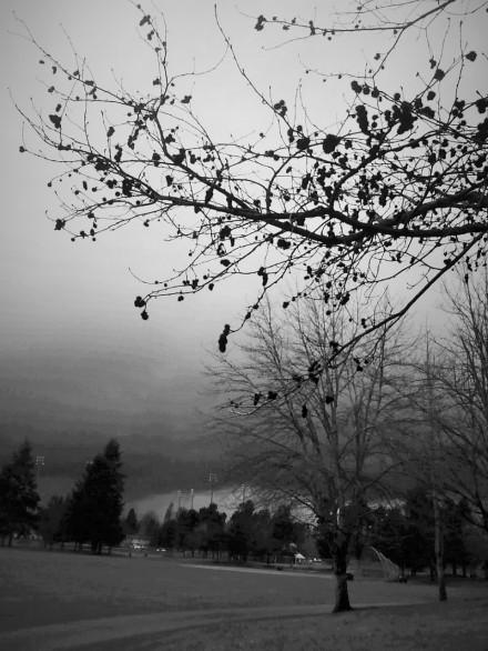 ominous clouds (3)