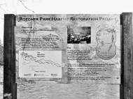 restoration signage (2)