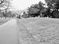 the hill (2)