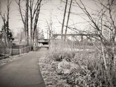train on bridge (3)